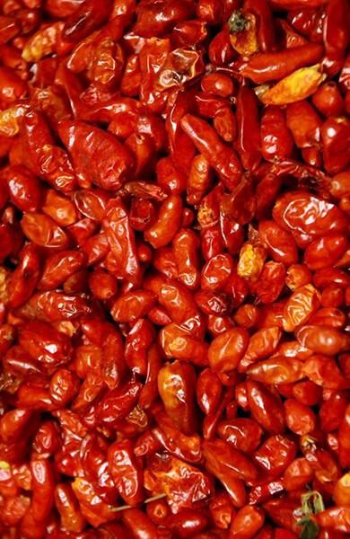 Chiles Machos-Productos_Chile-Piquin-1